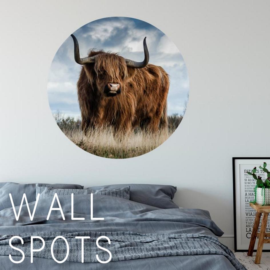 Wall Spots
